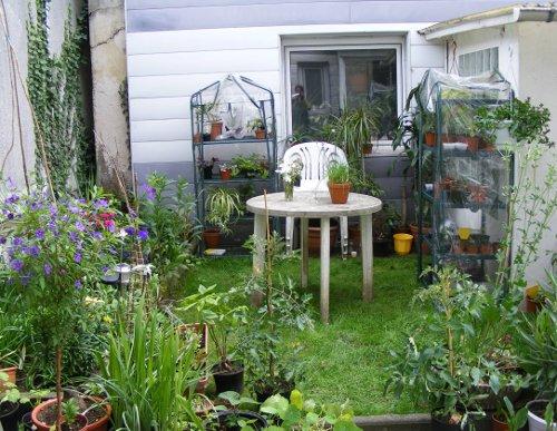 rasen neu anlegen im mini garten jk 39 s pflanzenblog. Black Bedroom Furniture Sets. Home Design Ideas