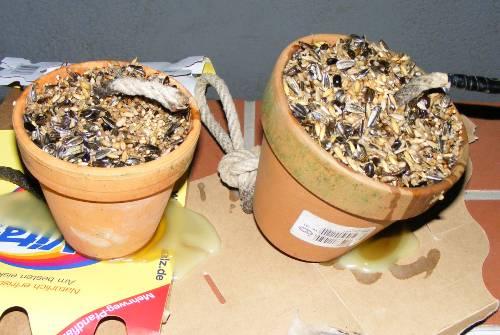 blumentopf vogelfutter platz selber basteln jk 39 s pflanzenblog. Black Bedroom Furniture Sets. Home Design Ideas