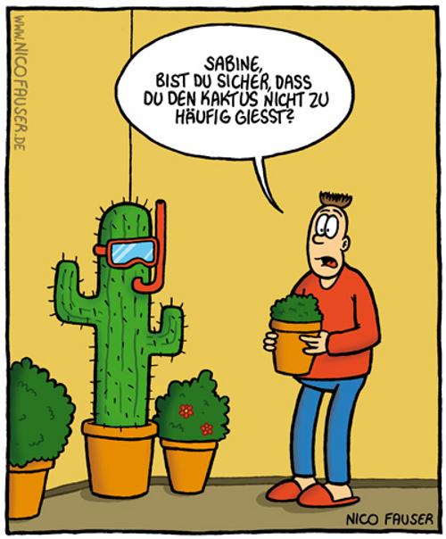 Nico Hat Humor Jk S Pflanzenblog
