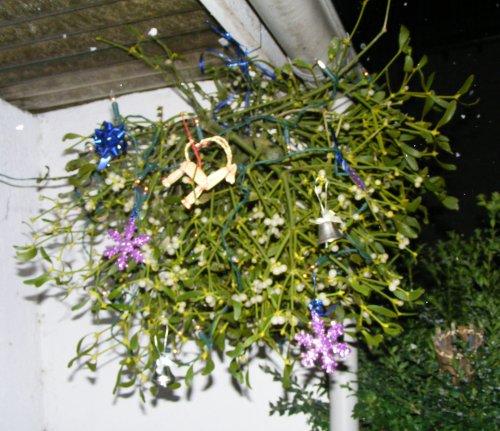 Mistelzweig deko mit beleuchtung jk 39 s pflanzenblog for Weihnachten wohnung dekorieren